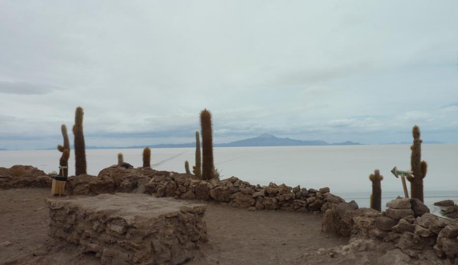 Uyuni_Incahuasi Insel